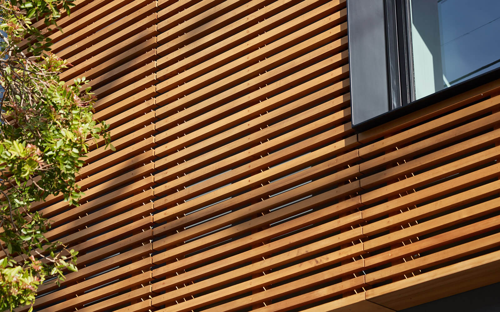 studio vara residential noe wood siding window